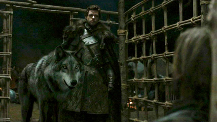 GameOfThrones GreyWind The Wall, White Walkers and Westeros: HBO's Game of Thrones