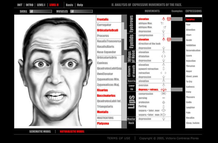 O estudo do comportamento facial humano