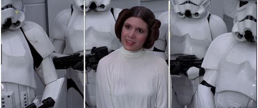 Leia Stormtroopers Thirds
