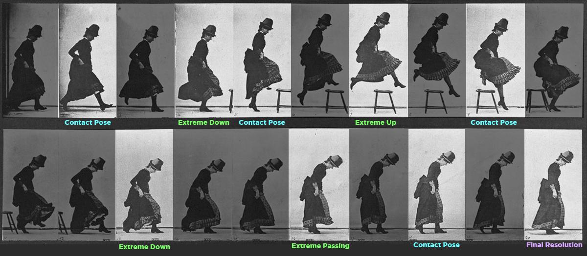 Eadweard Muybridge Photo Breakdown