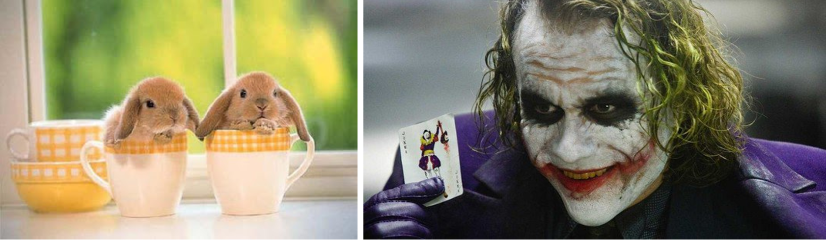 Bunny and Joker Animation Mentor