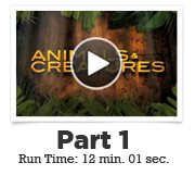 webinar vid img ABC 01 Animate Believable Creatures